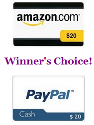Giveaway: $20 To Amazon Or PayPal [[29 Hours Only