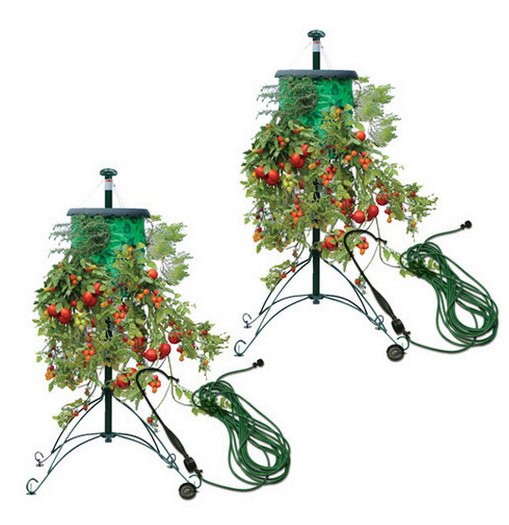 Topsy Turvy Tree Deluxe Hanging Tomato Fruit And Flower Stand W