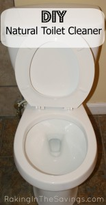 Save with this DIY Toilet Cleaner