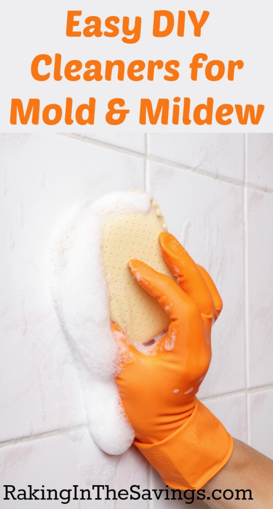 Diy Mold Mildew Cleaners Natural Mold Removal