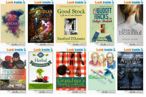 Free Books for Your Kindle or Computer for 1/22!